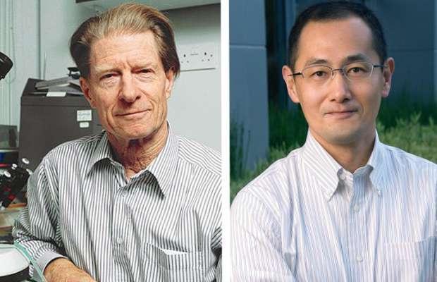 Nobel per la medicina 2012