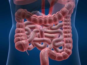 Trattamento intestino infiammato
