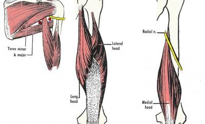 Strappo muscolare: definizione e rimedi